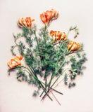 I fiori legano con i fiori di fresia Immagine Stock Libera da Diritti