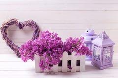 I fiori lilla in scatola, in lanterne decorative e nel cuore su bianco corteggiano Fotografie Stock