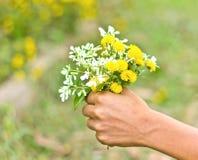 I fiori nella mano dell'uomo Immagini Stock Libere da Diritti