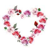 I fiori rosa d'annata del cuore si avvolgono con le rose ed i boccioli di rosa dell'acquerello, isolati su fondo bianco illustrazione di stock