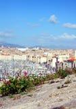 I fiori si sviluppano sopra la città di Marsiglia Fotografie Stock Libere da Diritti