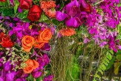I fiori sono bei e rinfrescare fotografia stock