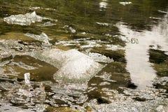 Is i floden Arkivbild