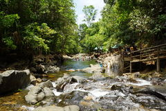 In i floden Royaltyfri Fotografi
