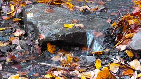 I flussi di corrente fra le pietre ed il giallo video d archivio