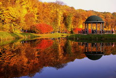 I fogli di autunno Immagine Stock Libera da Diritti