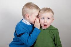 I fratelli dividono un segreto Fotografia Stock Libera da Diritti