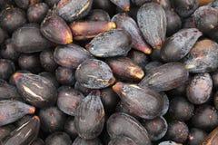 I frutti del fico comune mettono sul contatore Fotografia Stock