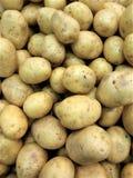 i frutti delle patate degli ortaggi freschi di colore di giallastro-Brown sono utili ai chip del porridge del purè di salute, royalty illustrazione gratis