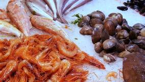I frutti di mare compensano la deriva le conchiglie delle cozze dell'ostrica del gambero dei gamberetti del calamaro dell'aragost video d archivio