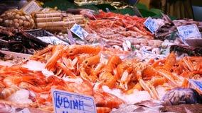 I frutti di mare compensano la deriva le conchiglie delle cozze dell'ostrica del gambero dei gamberetti del calamaro dell'aragost stock footage