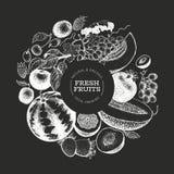 I frutti e le bacche progettano il modello Illustrazione tropicale di frutti di vettore disegnato a mano sul bordo di gesso Frutt immagine stock