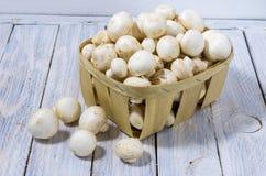I funghi bianchi sono piegati in un canestro di legno Composizione dei funghi prataioli Fotografia Stock Libera da Diritti