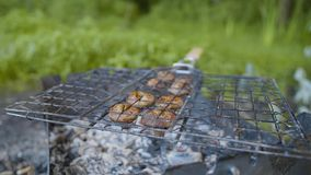 I funghi bruniscono il fungo prataiolo cucinato sull'aria aperta del barbecue o della griglia archivi video