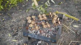 I funghi bruniscono il fungo prataiolo cucinato sull'aria aperta del barbecue o della griglia stock footage