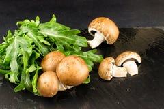 I funghi crudi freschi bruniscono i funghi prataioli e la rucola verde su un dar Fotografia Stock