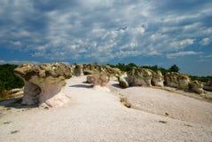 I funghi della pietra Fotografia Stock