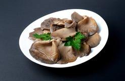I funghi di ostrica marinati con prezzemolo coprono di foglie su un piatto bianco Fotografie Stock
