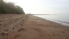 i funzionamenti castana della ragazza sulla spiaggia gira in tondo all'alba archivi video
