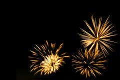 I fuochi d'artificio dorati rasentano i precedenti neri del cielo Immagine Stock