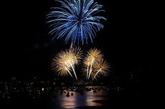 I fuochi d'artificio gradiscono l'albero blu sopra gli alberi gialli Immagine Stock Libera da Diritti