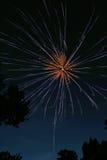 I fuochi d'artificio hanno scoppiato 5 Fotografie Stock