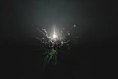 I fuochi d'artificio naturali brillanti gradiscono il razzo Immagine Stock