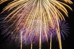 I fuochi d'artificio variopinti accendono il cielo Fotografie Stock Libere da Diritti