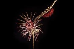 I fuochi d'artificio variopinti accendono il cielo Fotografia Stock Libera da Diritti