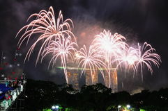 I fuochi d'artificio video durante il NDP 2010 Immagini Stock