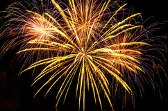 I fuochi d'artificio visualizzano nelle forme e nei colori differenti Fotografia Stock