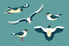 I gabbiani Insieme degli uccelli marini nello stile del piano Fotografia Stock Libera da Diritti