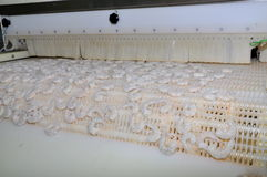 I gamberetti stanno ottenendo congelati in una fabbrica dei frutti di mare nella città di Quy Nhon, Vietnam Immagine Stock