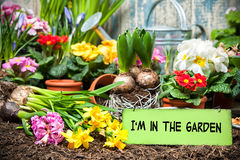 I am in the garden sign Stock Images