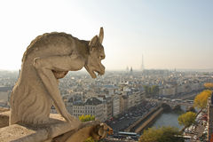 I Gargoyles di Notre Dame Immagini Stock