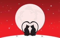 I gatti si siedono la luce della luna Immagine Stock Libera da Diritti