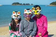 I gatti sono retro- il Maurauders mascherato Fotografia Stock