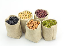 I generi differenti di fagioli in sacchi insaccano su fondo bianco fotografia stock