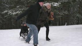 I genitori che corrono con il loro bambino su una slitta nell'inverno parcheggiano archivi video