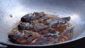 I genitori dei bambini pubblici della scuola elementare friggono il pesce durante il raduno di cottura nutrizionale stock footage