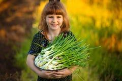 I genitori felici di aiuto della bambina strappano le cipolle in giardino immagine stock libera da diritti