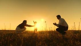 I genitori sono insegnati a a camminare piccolo bambino, bambina gli rende i primi punti al sole, movimento lento archivi video