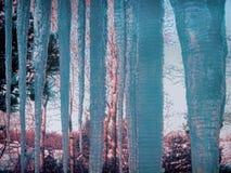 I ghiaccioli del ghiacciolo ghiacciano vicino su orario invernale dell'inverno del primo piano Fotografia Stock Libera da Diritti