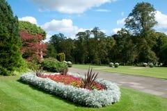 Il giardino floreale Fotografia Stock