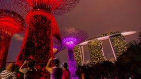 I giardini della cima del tetto dell'hotel delle sabbie della baia del porticciolo dell'illuminazione di notte mostrano il lasso  video d archivio