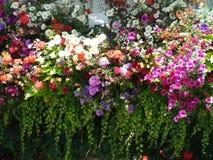 I giardini di Butchart, Victoria, Canada fotografia stock