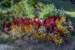 I giardini Nimes della fontana Fotografia Stock