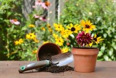 I giardinieri presentano con i fiori Immagini Stock Libere da Diritti