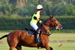 I giocatori di polo del cavallo di signora sono competin Immagine Stock