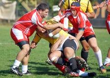 I giocatori di rugby combattono per la palla in Dinamo il Bucarest-CSM Bucarest immagini stock libere da diritti